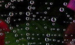 network of crystal orbs